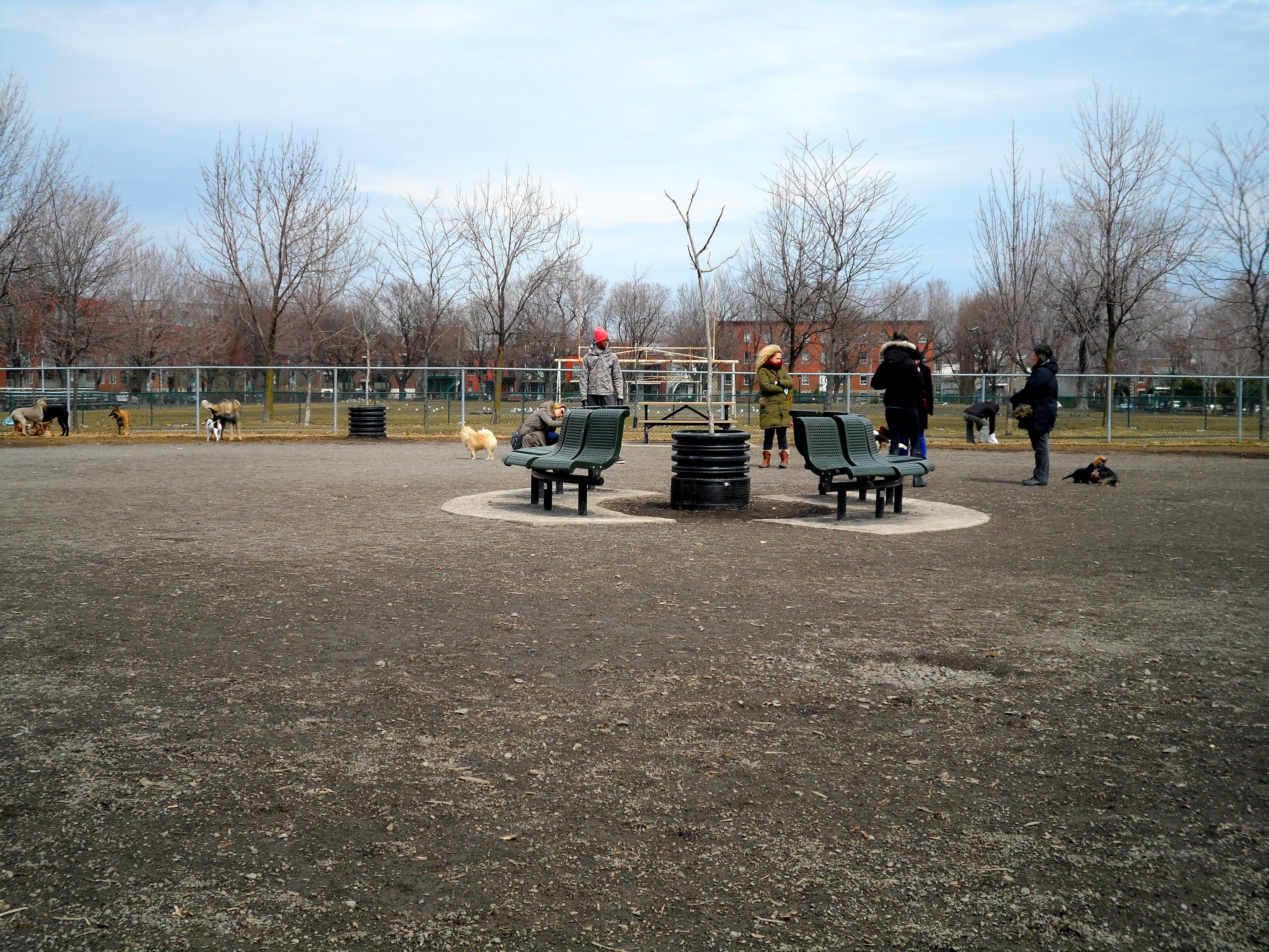 Parc Laurier Montreal Parc Sir-wilfrid-laurier